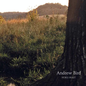 Andrew Bird – Noble Beast LP