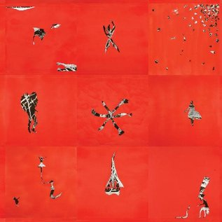 Animal Collective – Hollinndagain