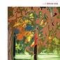 Brian Eno - LUX LP