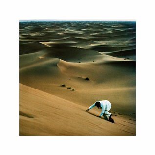 Baxter Dury ‎– Prince Of Tears LP