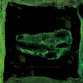 Avey Tare – Down There LP