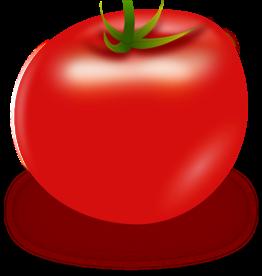 "MARI-MANN HERB FARM TOMAT PLANT TOMATO, CUPID (GRAPE) 3.5"""