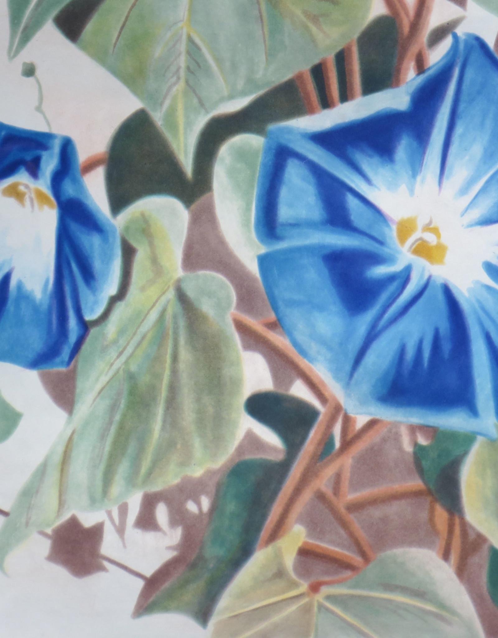 """Carolyn Brady """"Heavenly Blue Morning"""""""