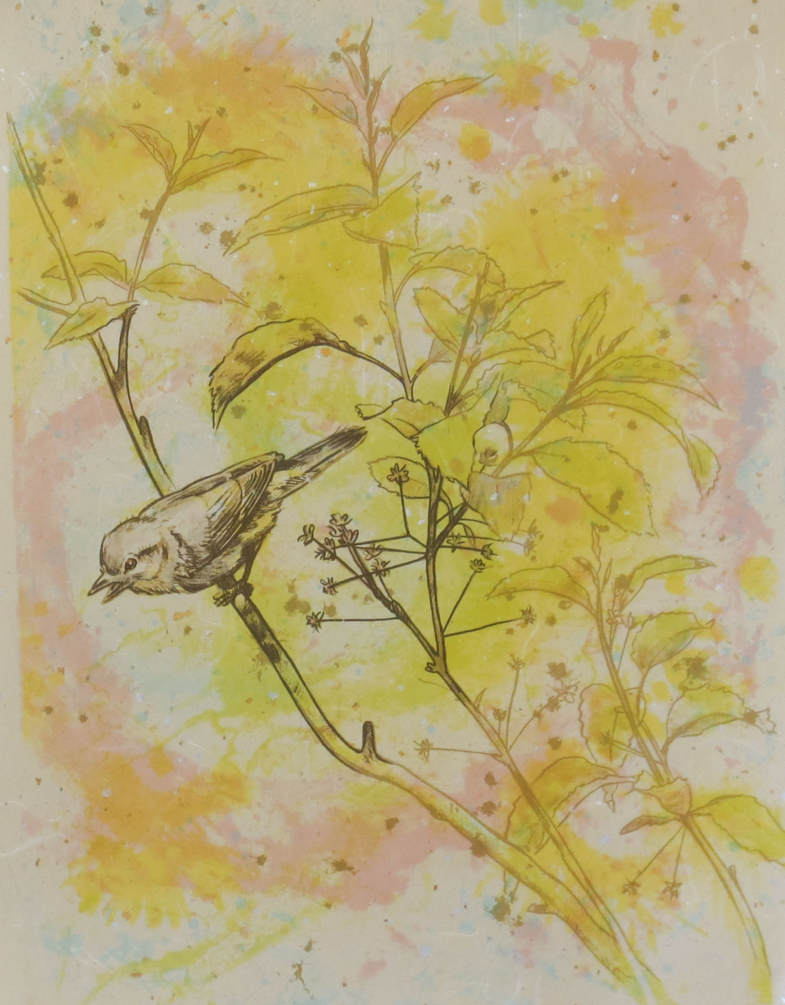 "David Saunders ""Bird's Eye I"""