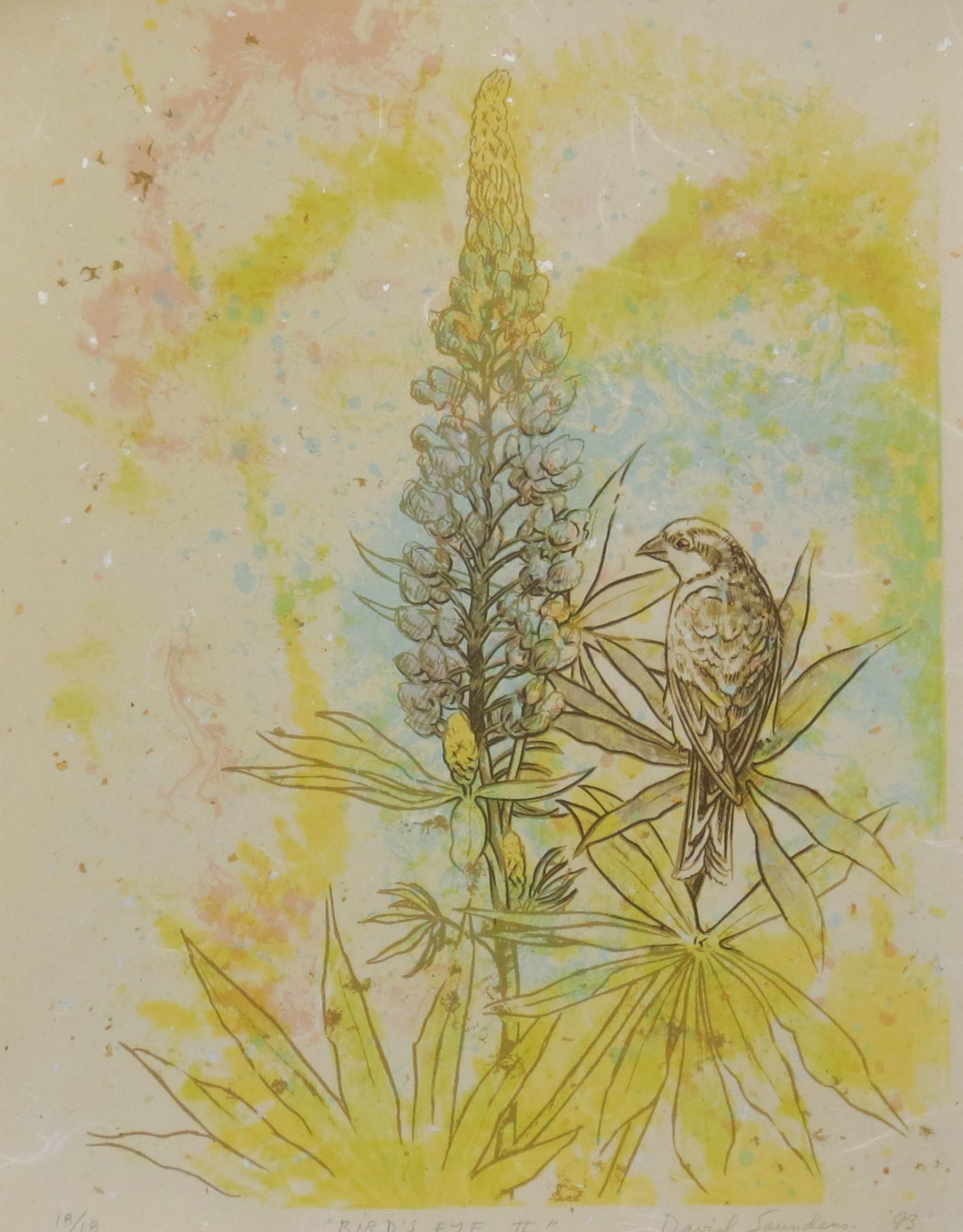 "David Saunders ""Bird's Eye II"""