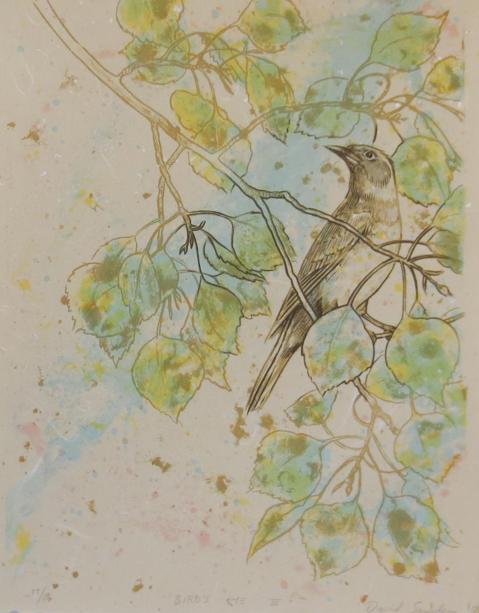 "David Saunders ""Bird's Eye III"""