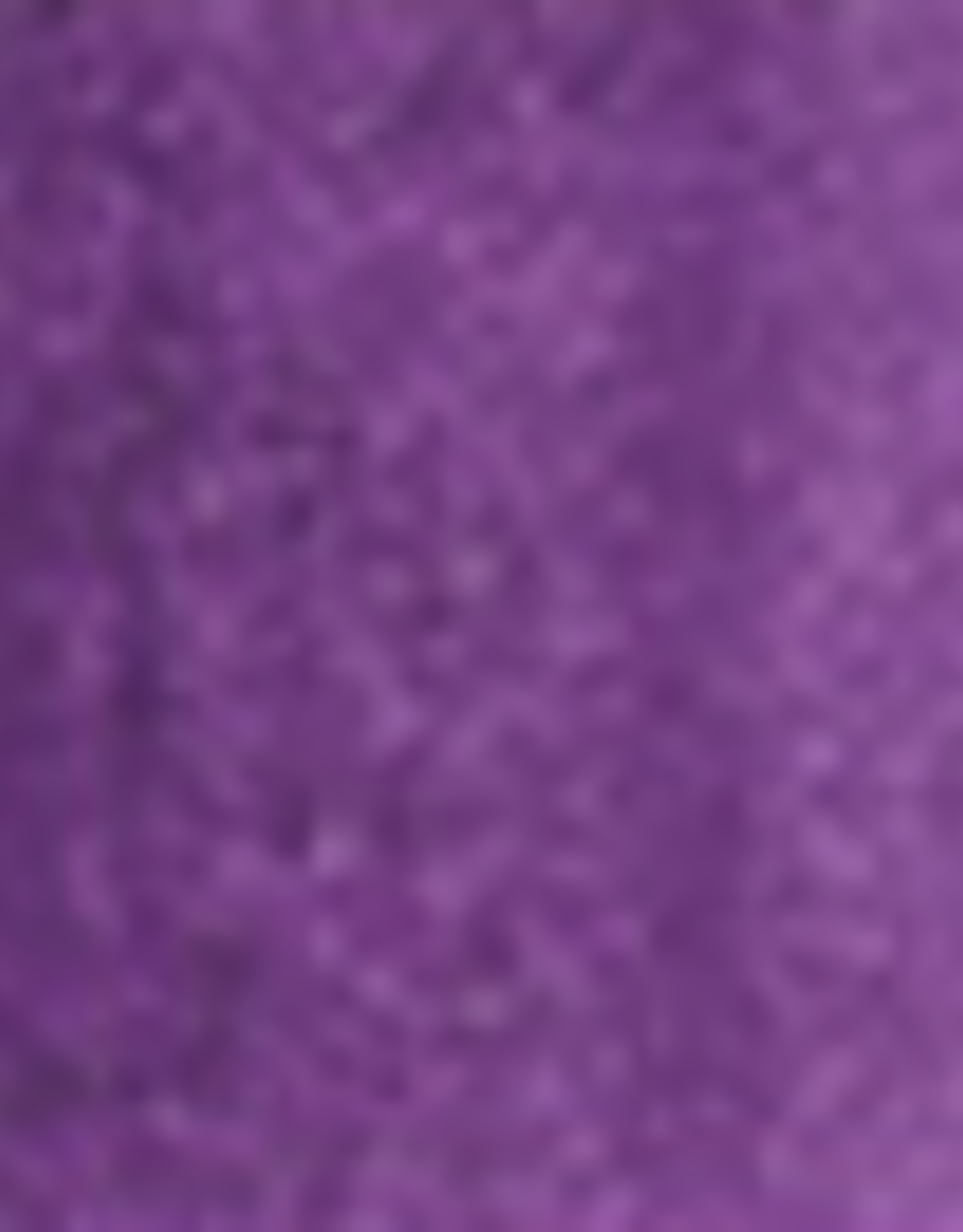 Holbein Holbein Watercolor Series B Mineral Violet 15 ml