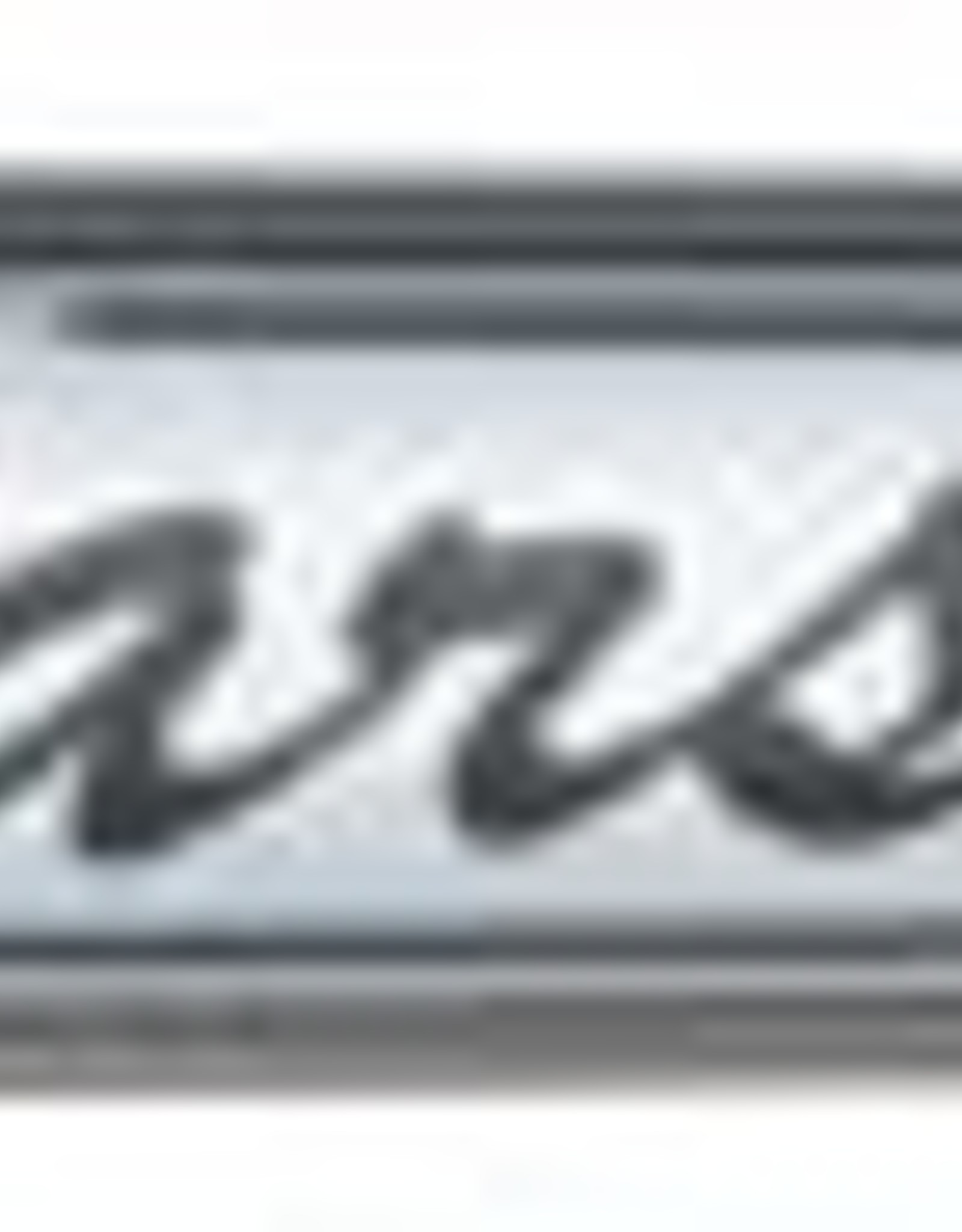 Pilot Varsity Disposable Fountain Pens