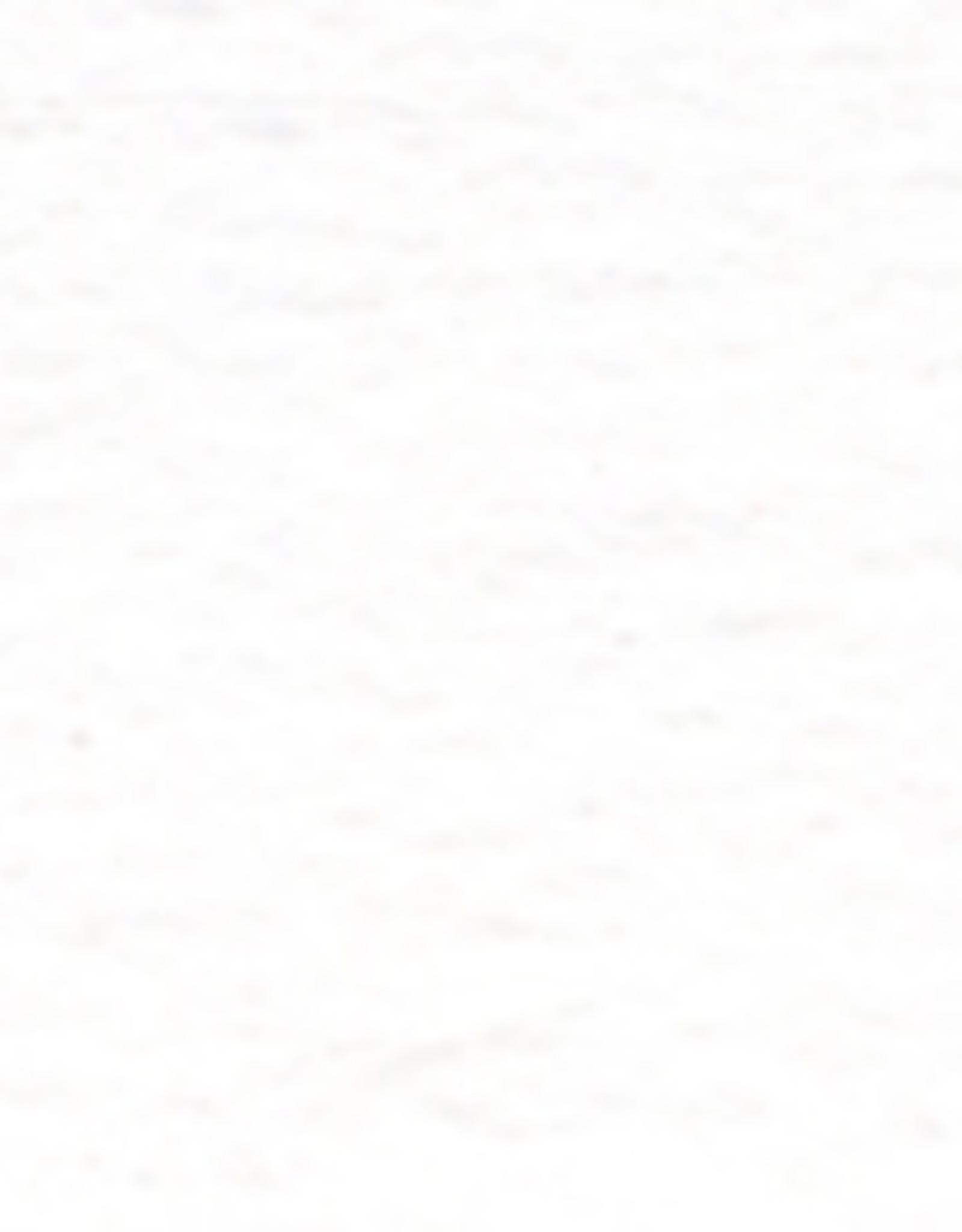 Holbein Gouache Series A Permanent White 15 ml