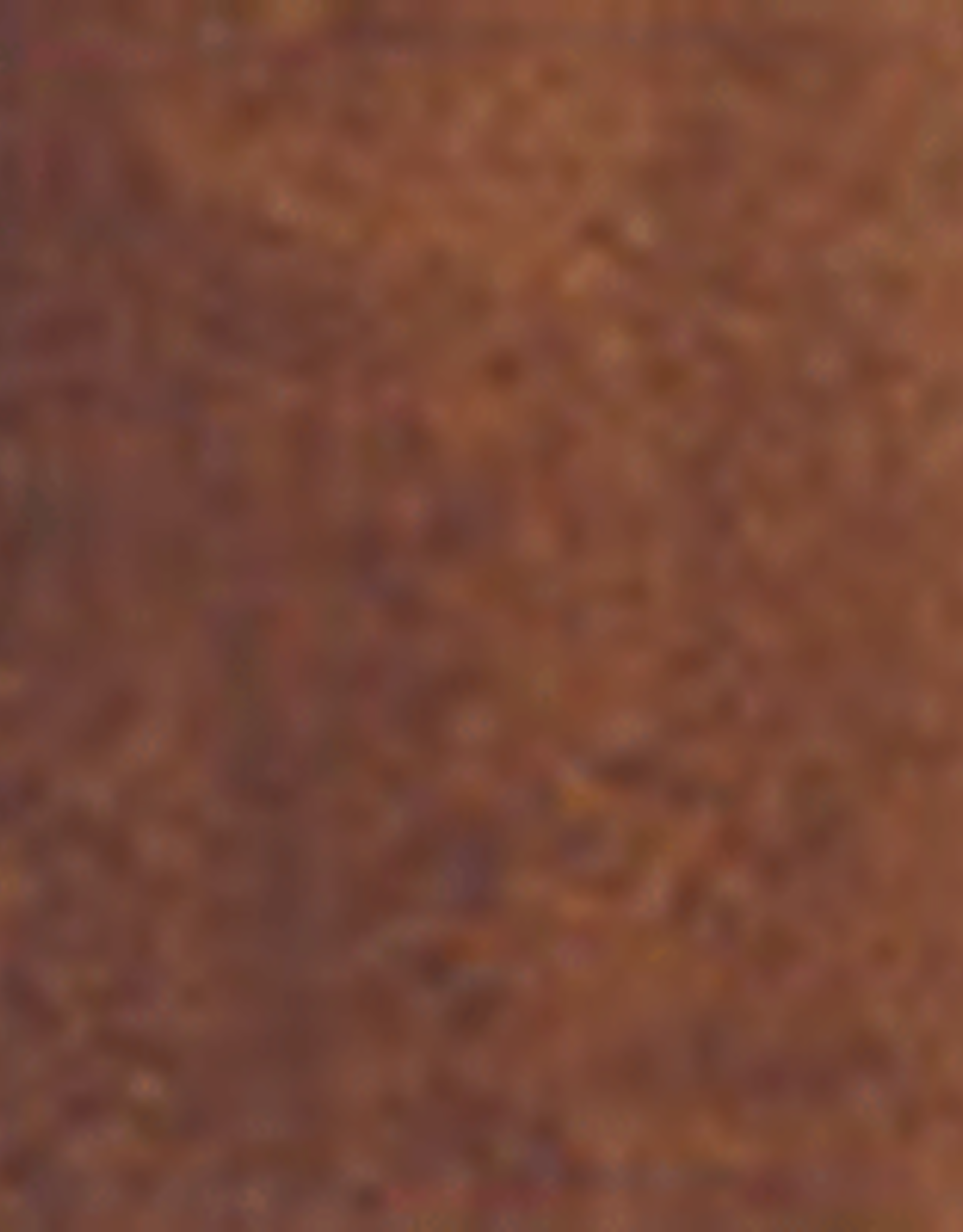 Holbein Watercolor Series A 15 ml Burnt Umber 15 ml