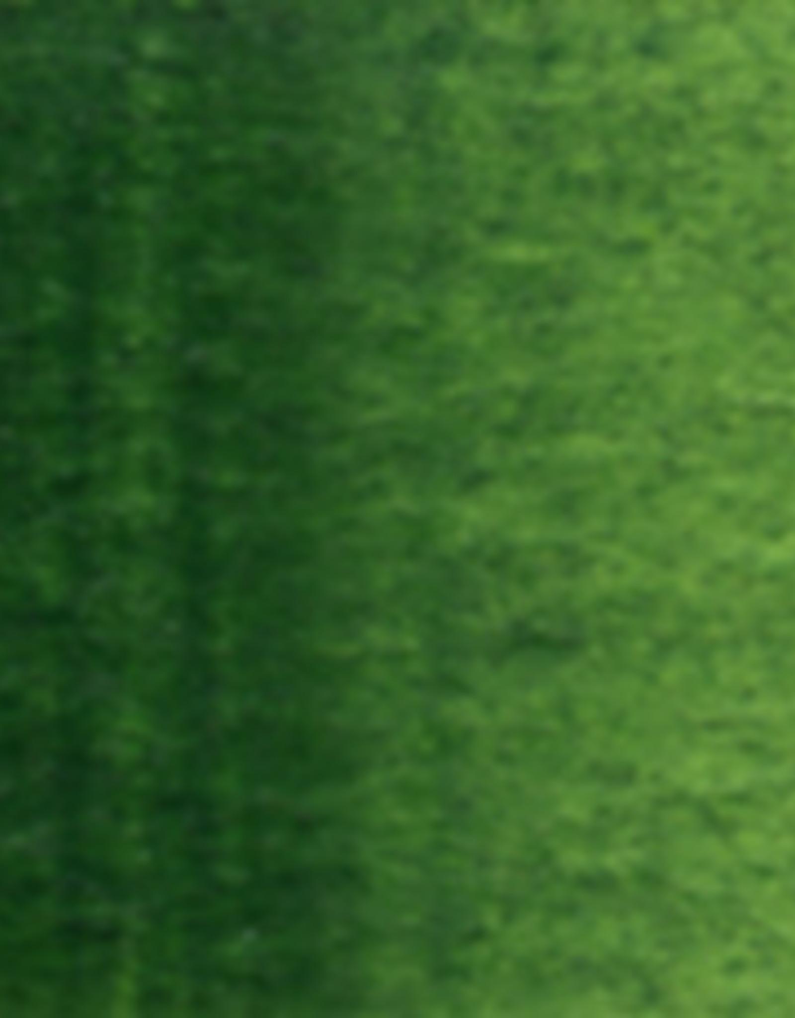 Holbein Watercolor Series B 15 ml Sap Green 15 ml