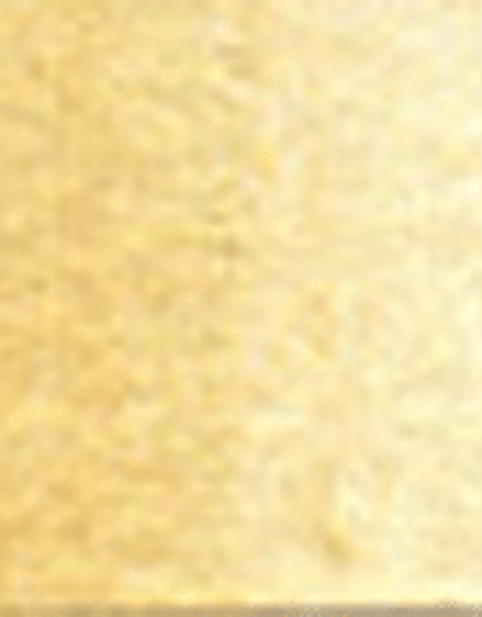 Holbein Watercolor Series C 15 ml Gold 15 ml