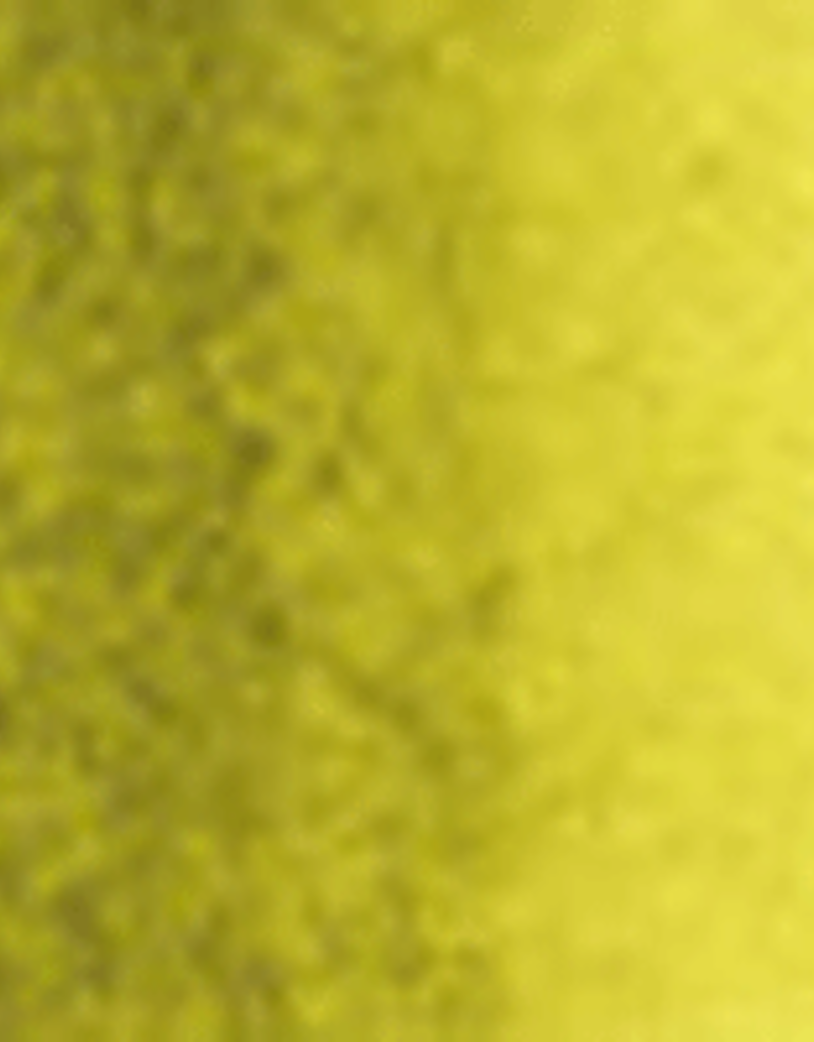 Holbein Watercolor Series C 15 ml Greenish Yellow 15 ml