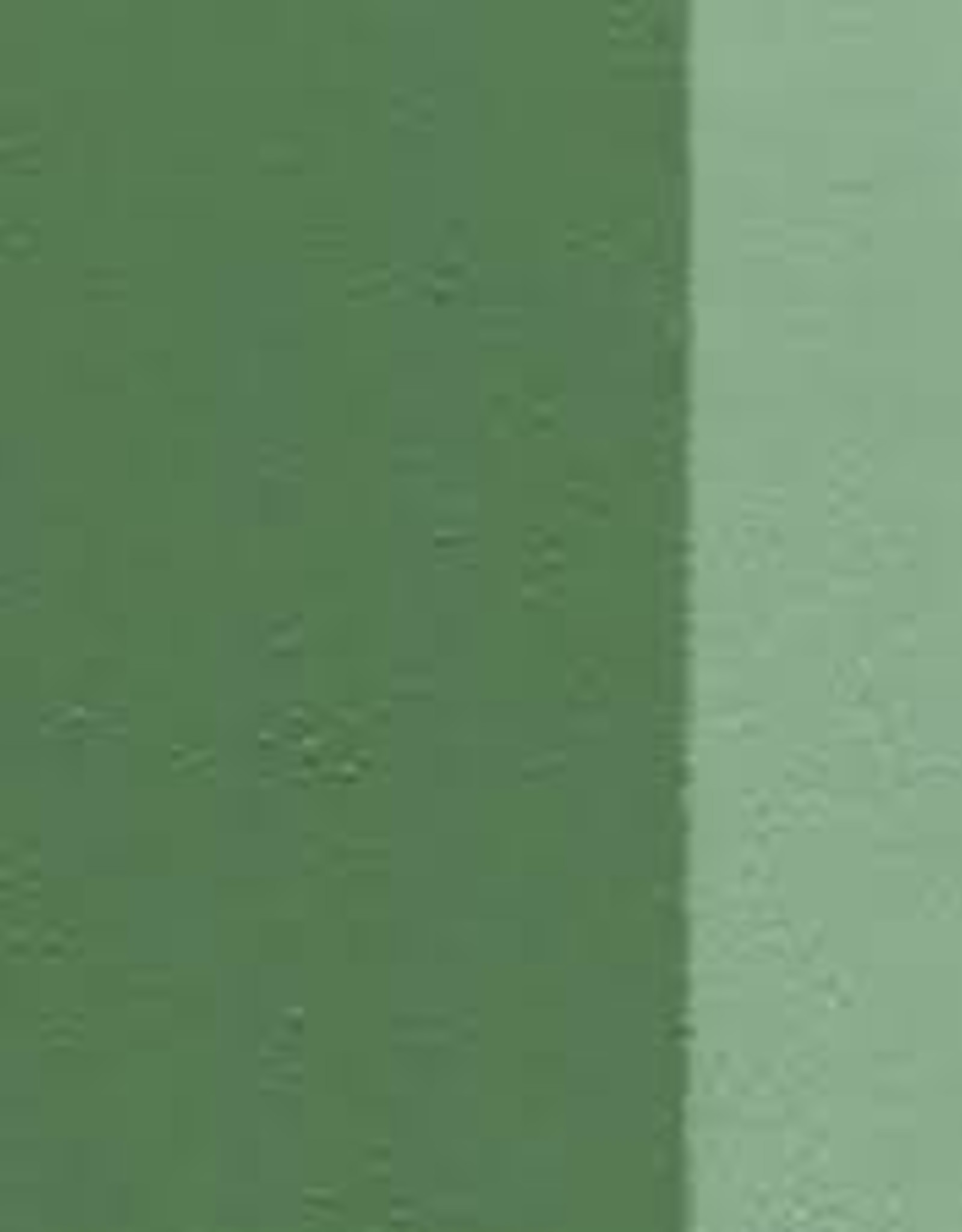 Holbein Oil Color Series A 40 ml Green Grey 40 ml