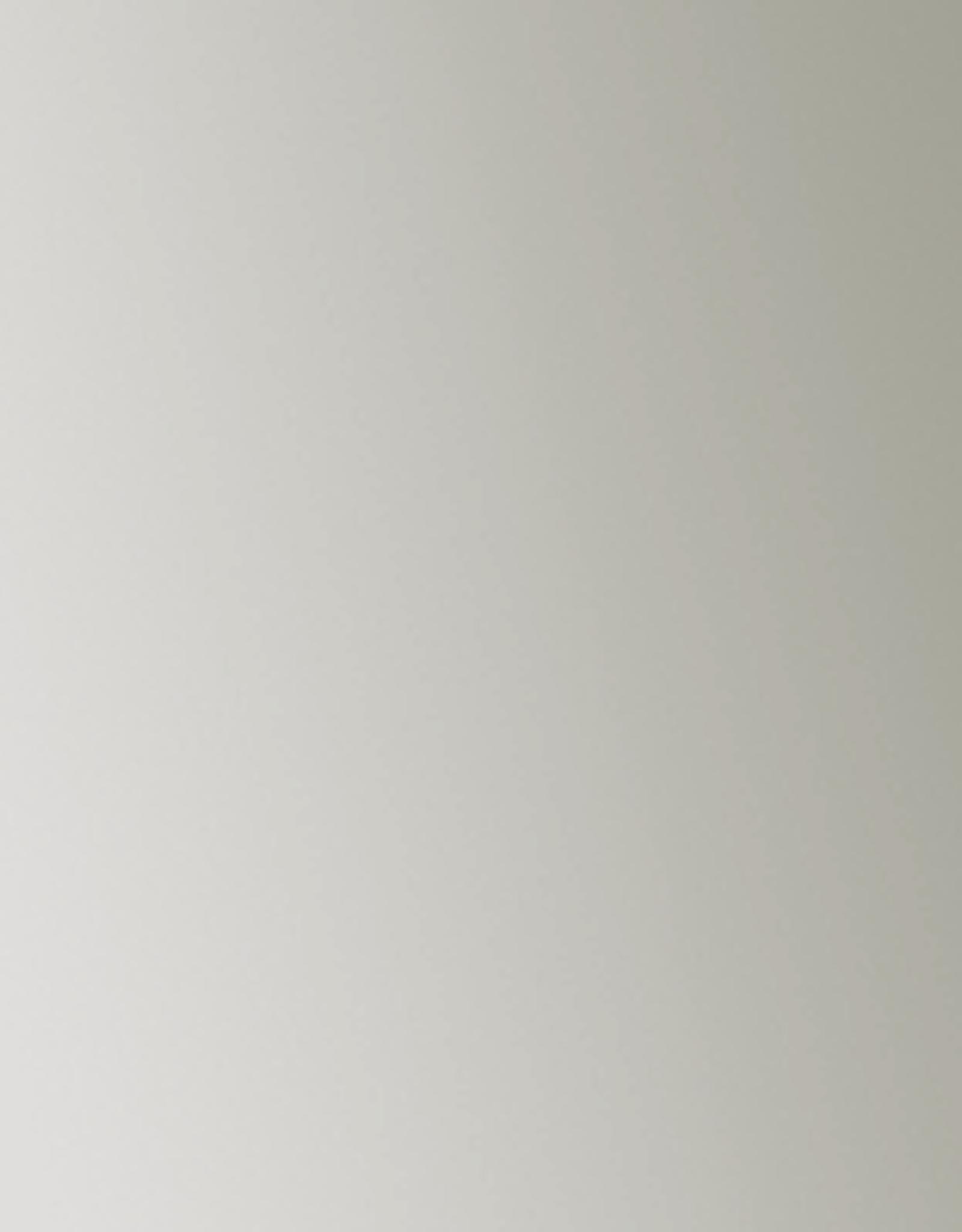 Fluid Acrylics Series 5 Irides Stainless Steel (Coarse) 4oz