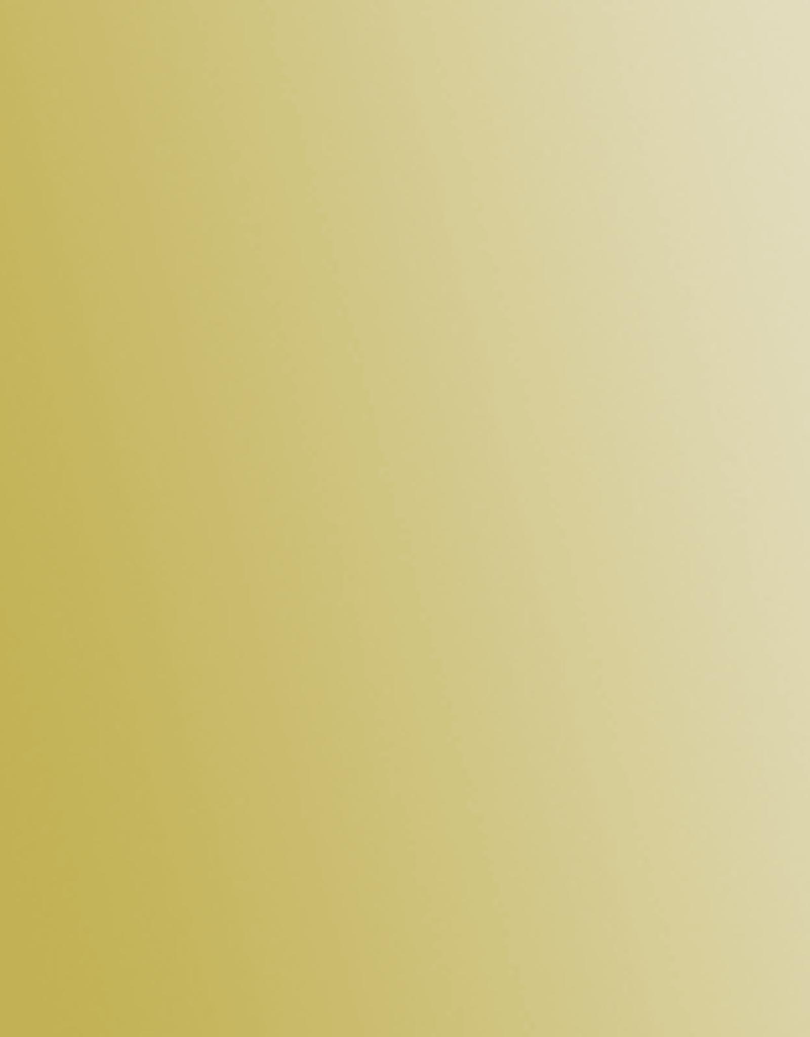 Golden Fluid Acrylics Series 6 Iridescent Gold (Fine) 4oz