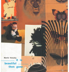 It Is Beautiful Then Gone by Martin Venezky