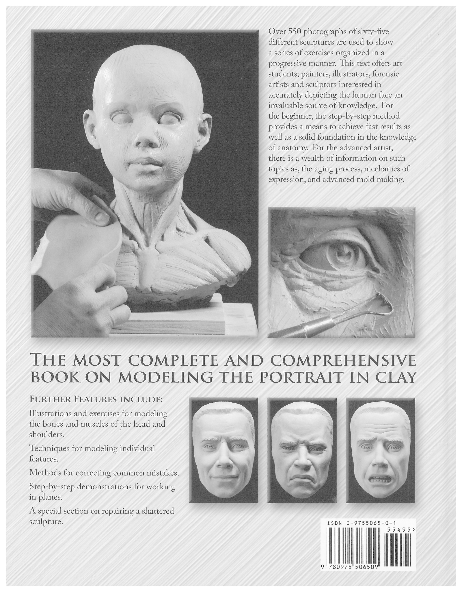 Portrait Sculpting: Anatomy & Expressions in Clay