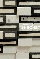 All At Once : Arlene Shechet