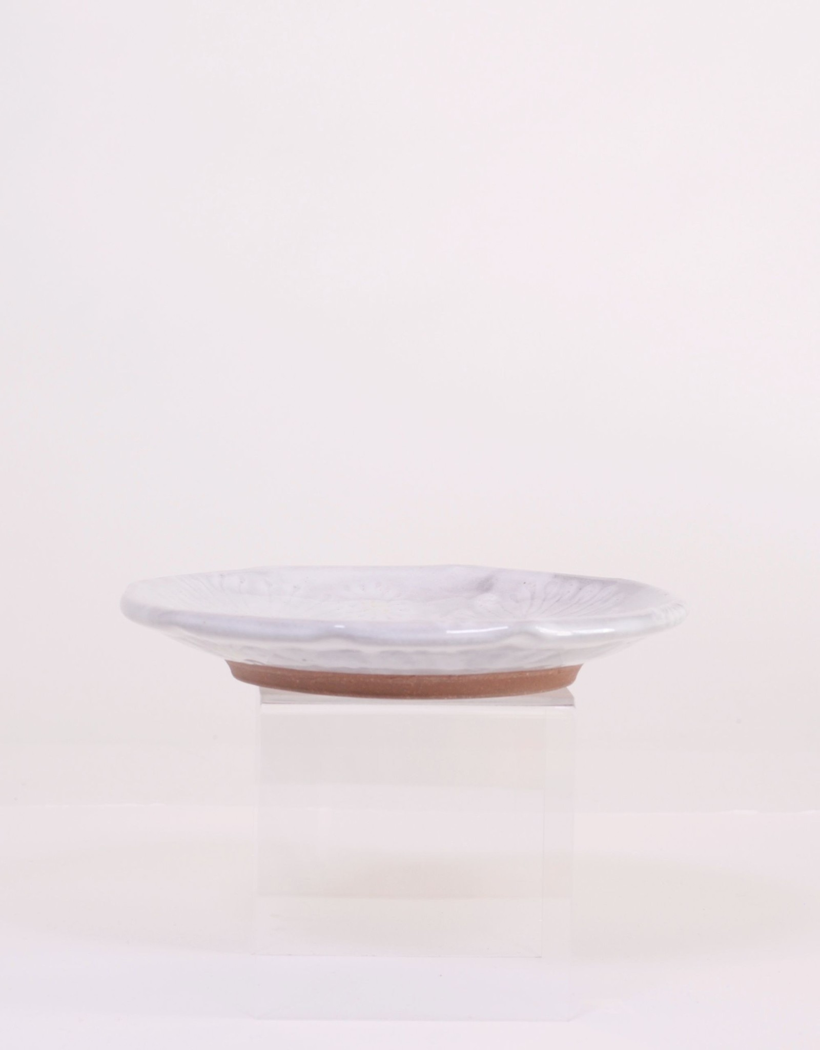 Ruth Easterbrook White Daisy Plate
