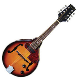D'Addario Canada BEAVER CREEK, ELECTRIC MANDOLIN
