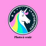 La Licornerie Coussin licorne moyen (Fait au Québec)