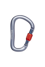 Black Diamond ROCKLOCK SCREWGATE CARABINER Gray