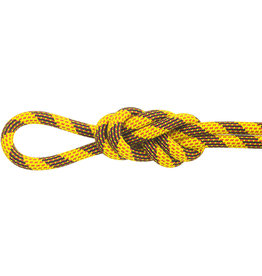 Maxim Ropes Pinnacle 9.5 Std-Dry 70m