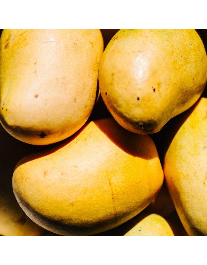 Orenda Botanicals Plus Restore - Luxurious Butter