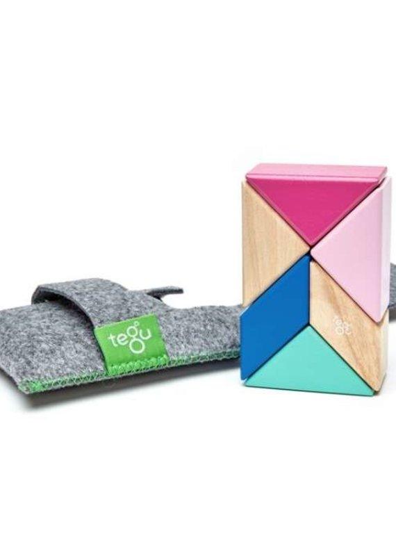 Tegu Ensemble de poche Prisme 6 pièces de bois magnétique