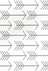 Coussin multifonctionnel avec écales de sarrazin