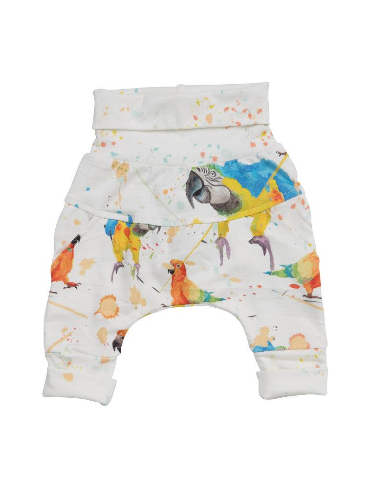 Little Yogi Harem Little parrots