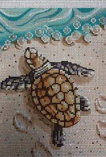 LL323 Baby Sea Turtle on the Beach