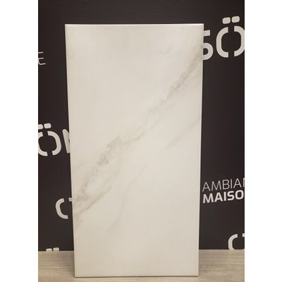 Olympia Ceramic Statuario 12x24 Bianco Olympia (22 ft2 per box)
