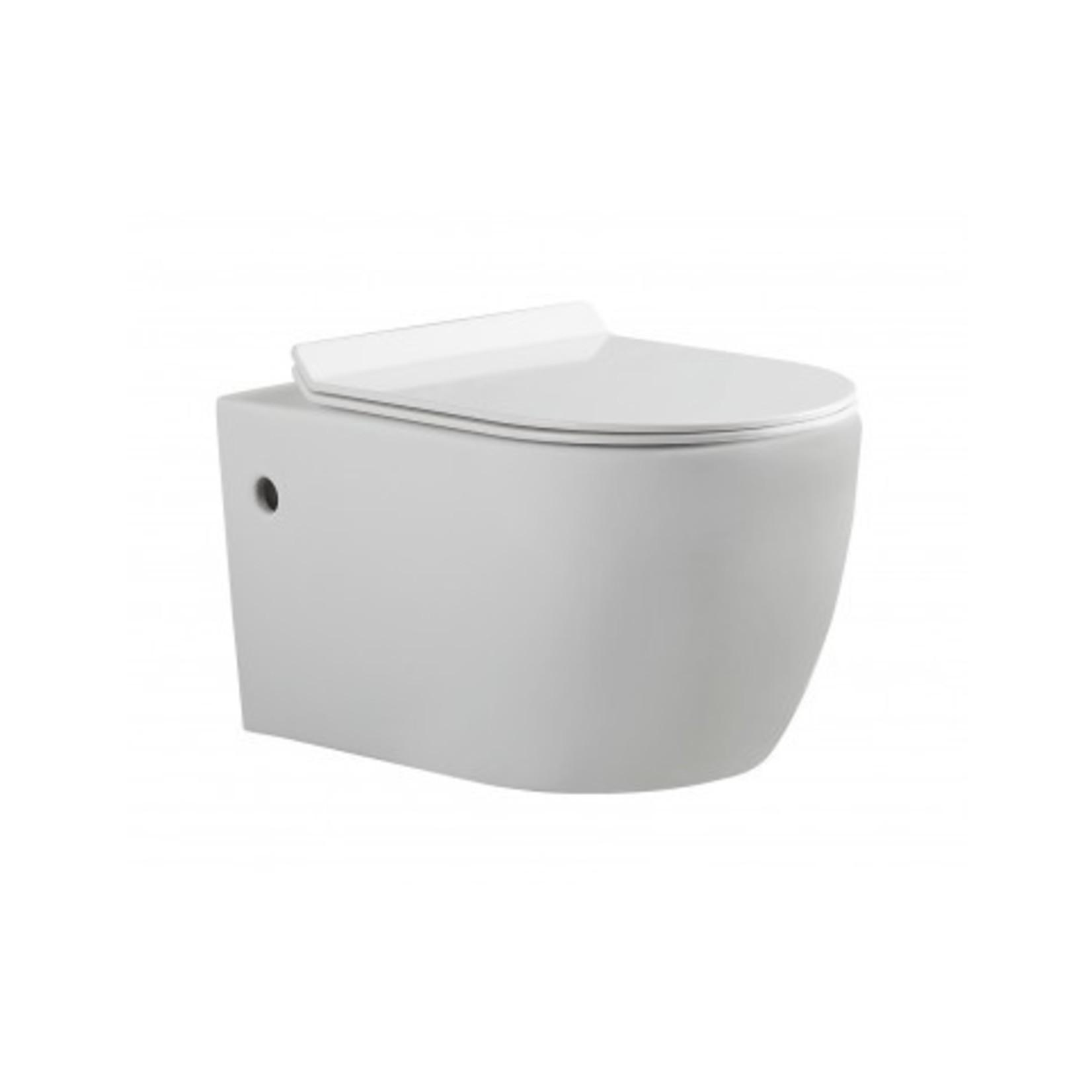 1/2 wall toilet