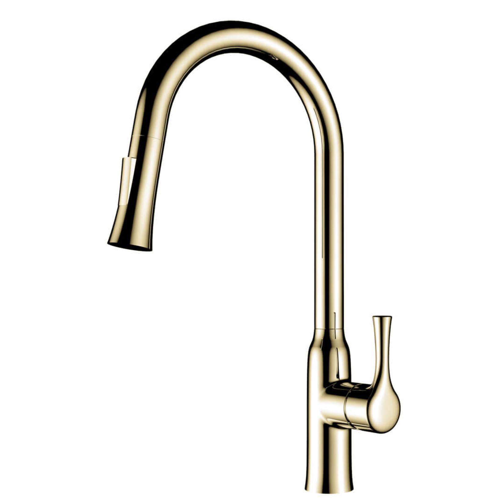 Parker Jade kitchen faucet brushed gold