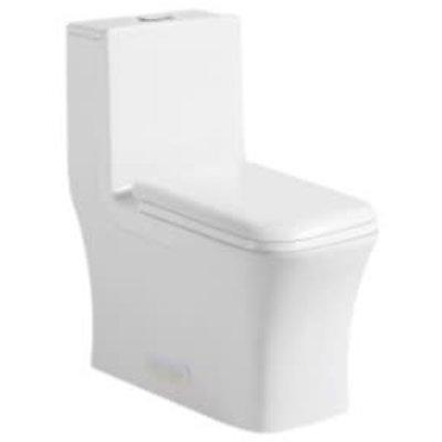 Toilette monopiece NTD-12044