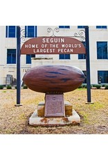 South Austin Gallery Largest Pecan Coaster