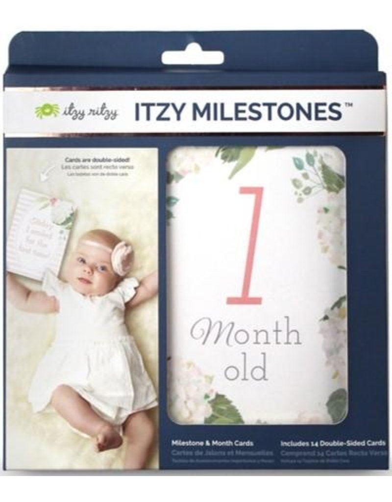 Itzy Ritzy Double Sided Milestone Cards