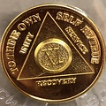 AA Gold-Plated Medallion