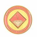 Narcotics Anonymous Enamel Medallion