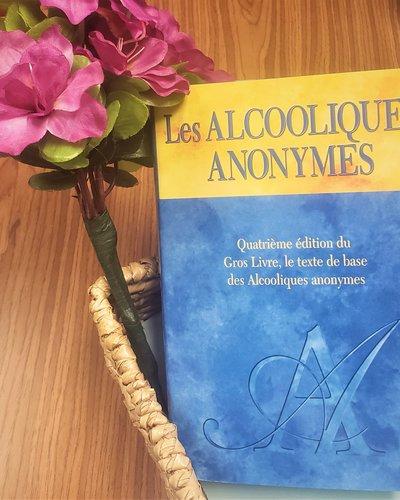 AA Big Book - French
