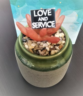 Love & Service Label Pin