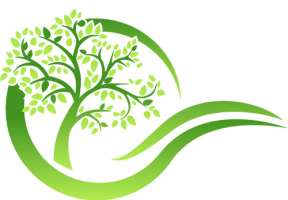 Recovery Books & Things