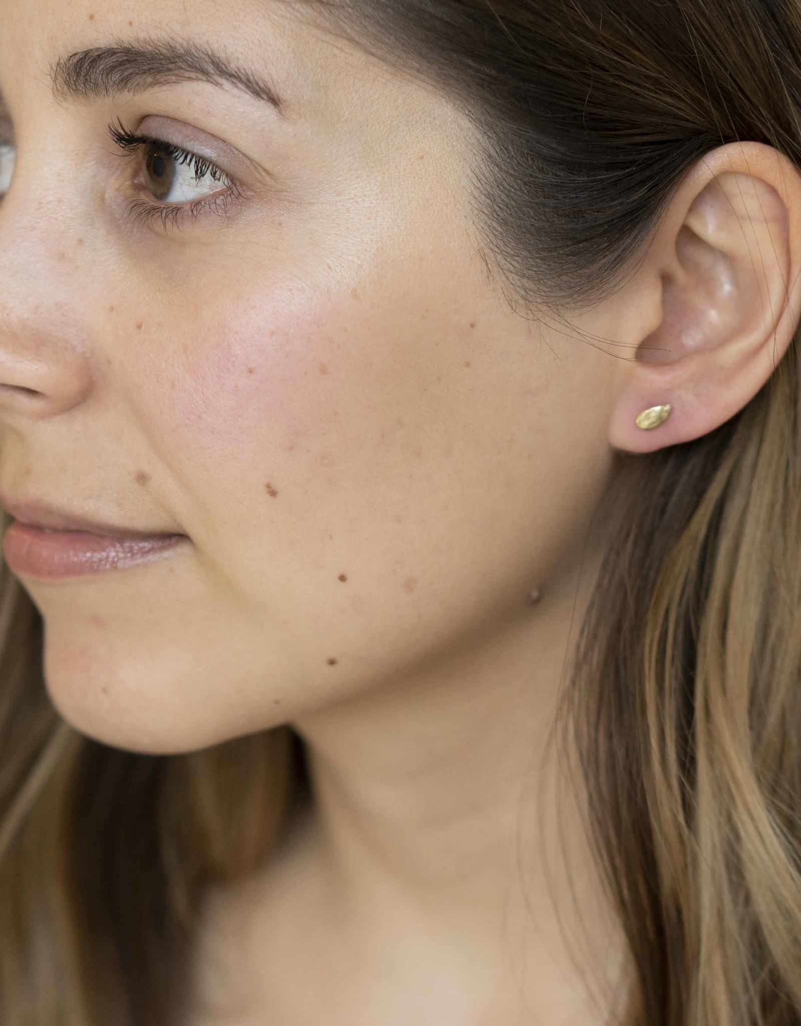 Thicket Jewelry 14k Apple Seed Studs