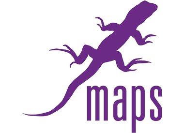 Purple Lizard