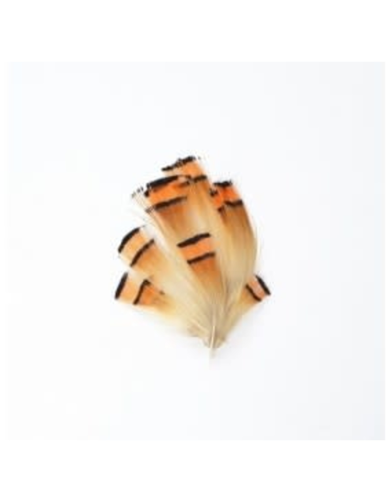 Perfect Hatch Golden Pheasant Tippet - Natural