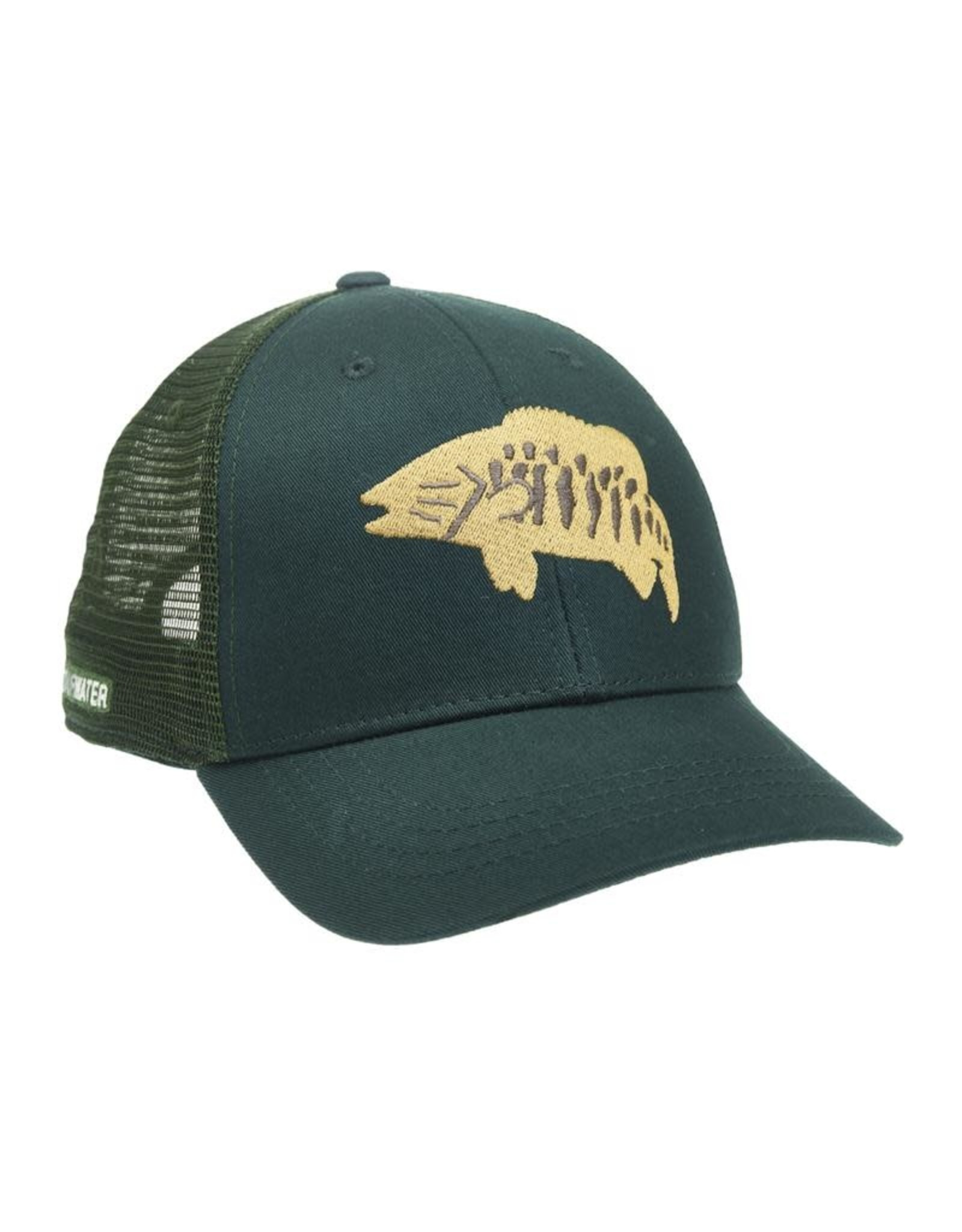 Rep Your Water RepYourWater Bronzeback Hat