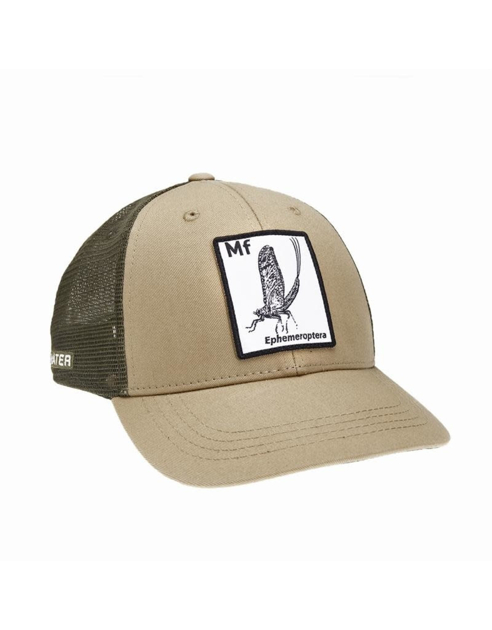 Rep Your Water RepYourWater Periodic Mayfly Standard Fit Hat