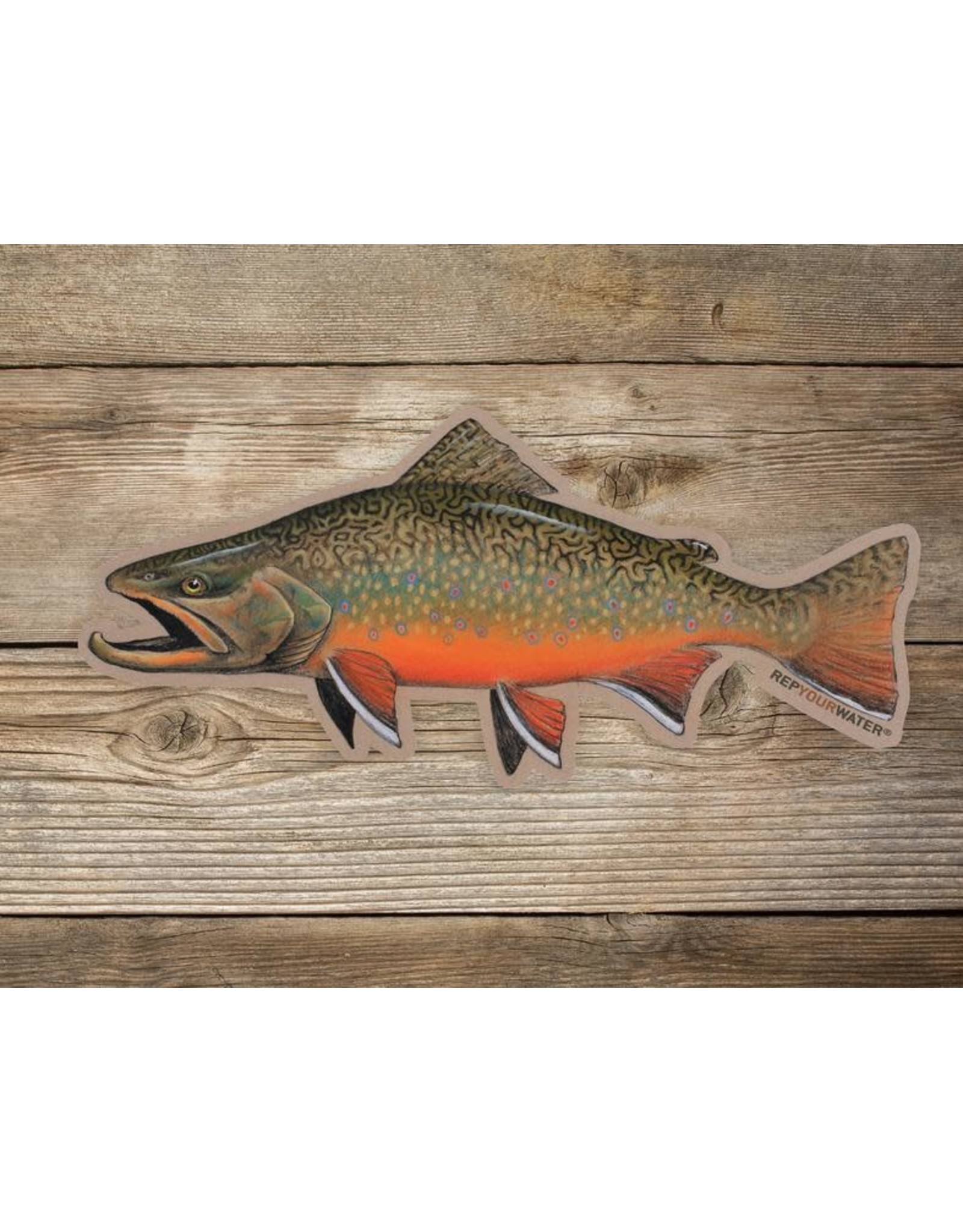 Rep Your Water RepYourWater Artist Reserve Fall Brookie Sticker - Large